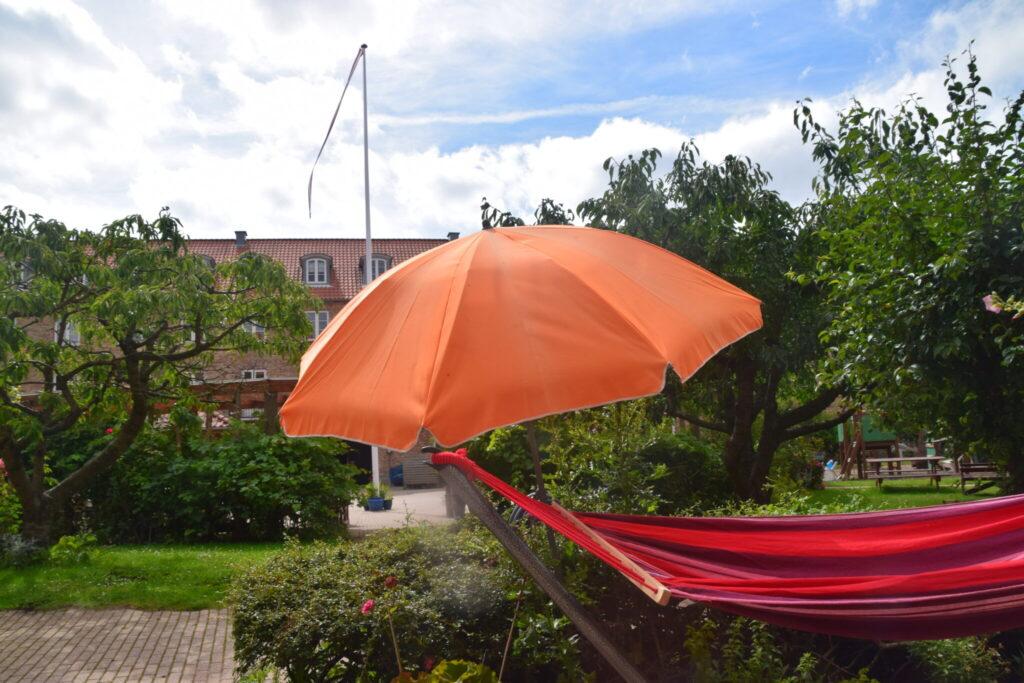 Min byhave sommeren 2020, her med udsigten fra havedøren ud mod gården. Min have sommeren 2020, Haveblog, ildfugl.com.
