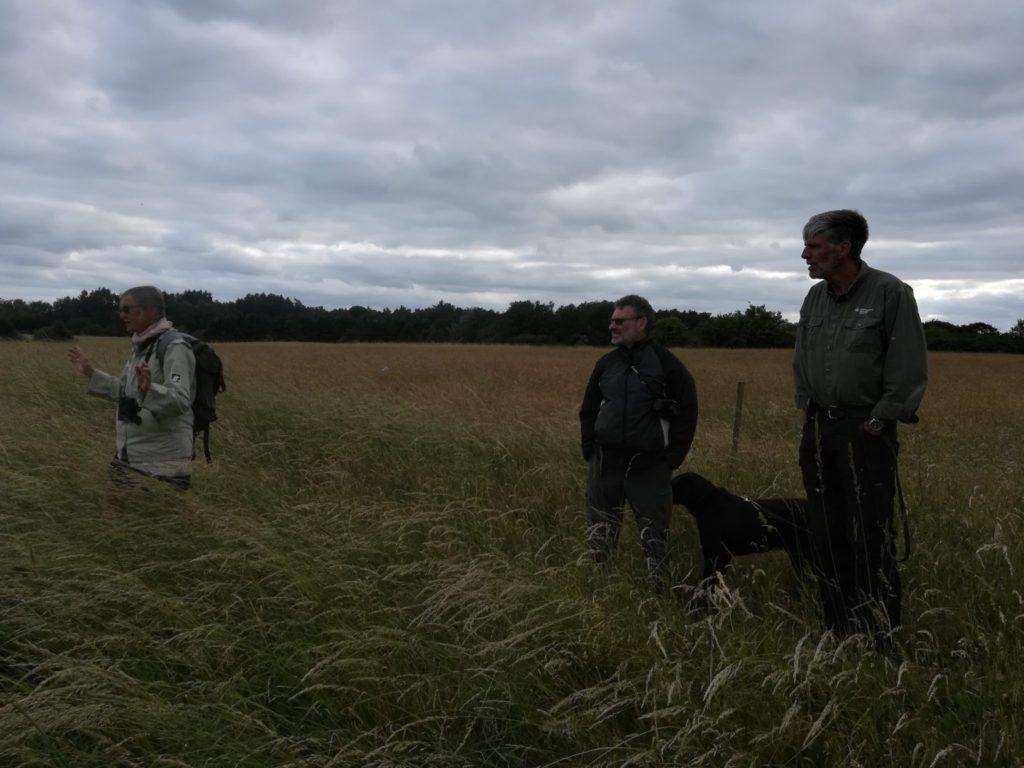 Anna Bodil står og forklare om problemet med Almindelig Draphavre <em>(Arrhenatherum</em> <em>elatius)</em>til Bjarne Skule, Stephan Spring (og hans hund Pepper) og os andre der ikke lige er med på billedet. Bioblitz på Flyvestation Værløse 2018. Naturstyrelsen, DOF, Lepidopterologisk forening m.f.
