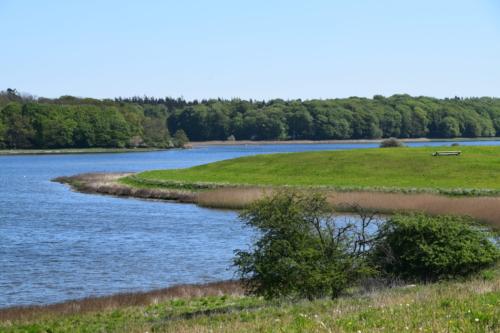 Bognæs og Roskilde fjord. En fantastisk udsigt, her er meget smukt.
