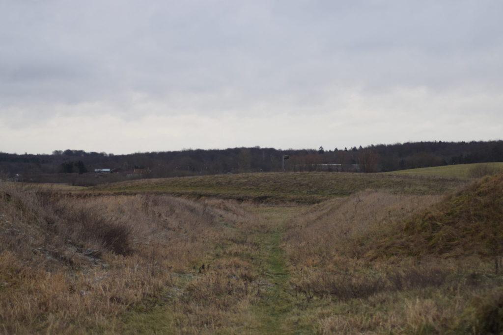 Den østlige del af Bombefoldene på Flyvestation Værløse. Her bor Dværgblåfugle (Cupido minimus).