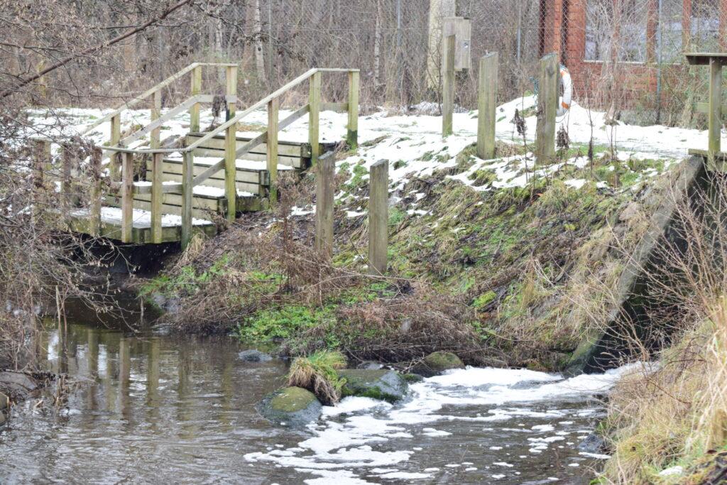 Vi ville lede efter Vandstær (Cinclus cinclus) langs Værebro å bagved Måløv, og vi kom derfor forbi rensningsanlægget. Her er set Vandstær før. Blog, Oplevelser/ Udflugter/ Felttur, Hyggetur, Ildfugl.com