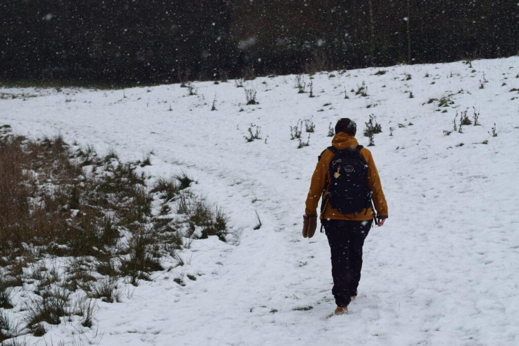 Værebro å ved Måløv og Jonstrup en snevejrsdag i januar 2021. På tur for at se Vandstær (Cinclus cinclus) og måske en Bjergvipstjert (Motacilla cinerea) langs Værebro å. Blog, Oplevelser/ Udflugter/ Felttur, Hyggetur, Ildfugl.com