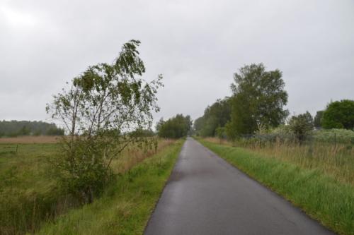 Kanalvej er navnet på en lang asfalteret vej, der løber hele vejen fra den nordvestlige til den sydøstlige del af Kalvebod Fælled. Den er smuk på denne regnfulde dag i maj.