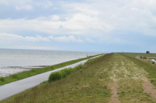 Kalvebod Fælled digets østligste punkt. Her er så fredfyldt. Diget er et af de mest imponerende eksempler på tæmning af naturens vildskab i Danmark efter min mening.