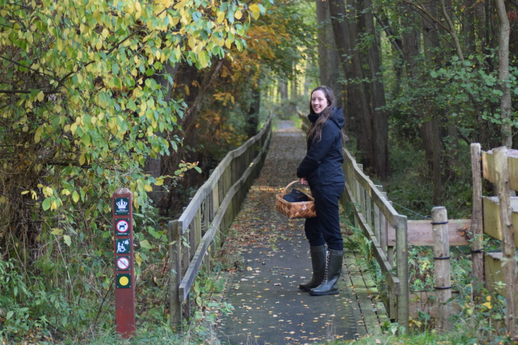 Gangbro gennem krat til fugletårnet ved Ulvshale eng på Møn. Oplev Møn.