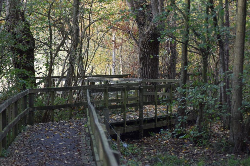Gangbro til fugletårn. Ulvshale eng. Oplev Møn