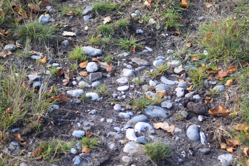Flintesten som Ulvshale er bygget op af. De stammer fra Møns klint. Oplev Møn.