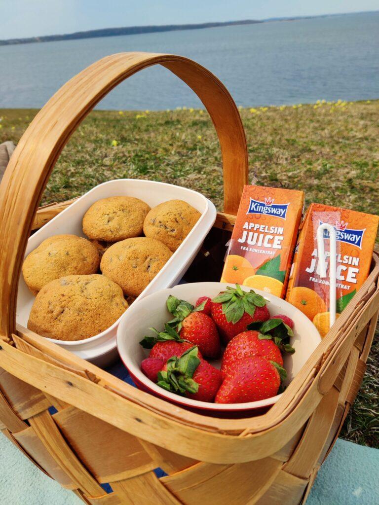Madkurven er pakket med snacks til udflugten i Ejby Ådal på min fødselsdag 29 april 2021. Blog. Udflugtsmad. Ildfugl.com