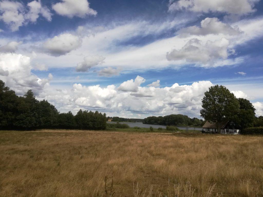 Udsigt fra lågen mod Bastrupkæret i det fjerne ved Bastrup sø (det grønne bagerst i billedet). Man skal over det i år tørre eng område hvor der græsses.