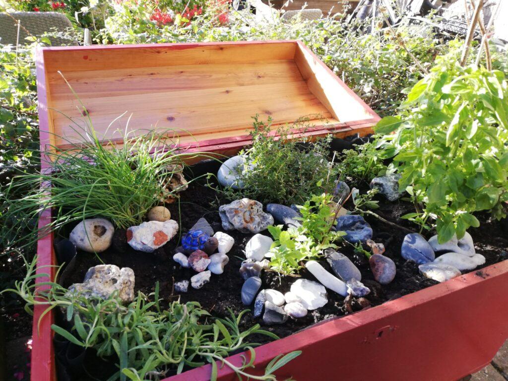 Genbrugsprojekt - Kasseret dragkiste genbrugt som krydderurtebed - haven - blog - ildfugl.com