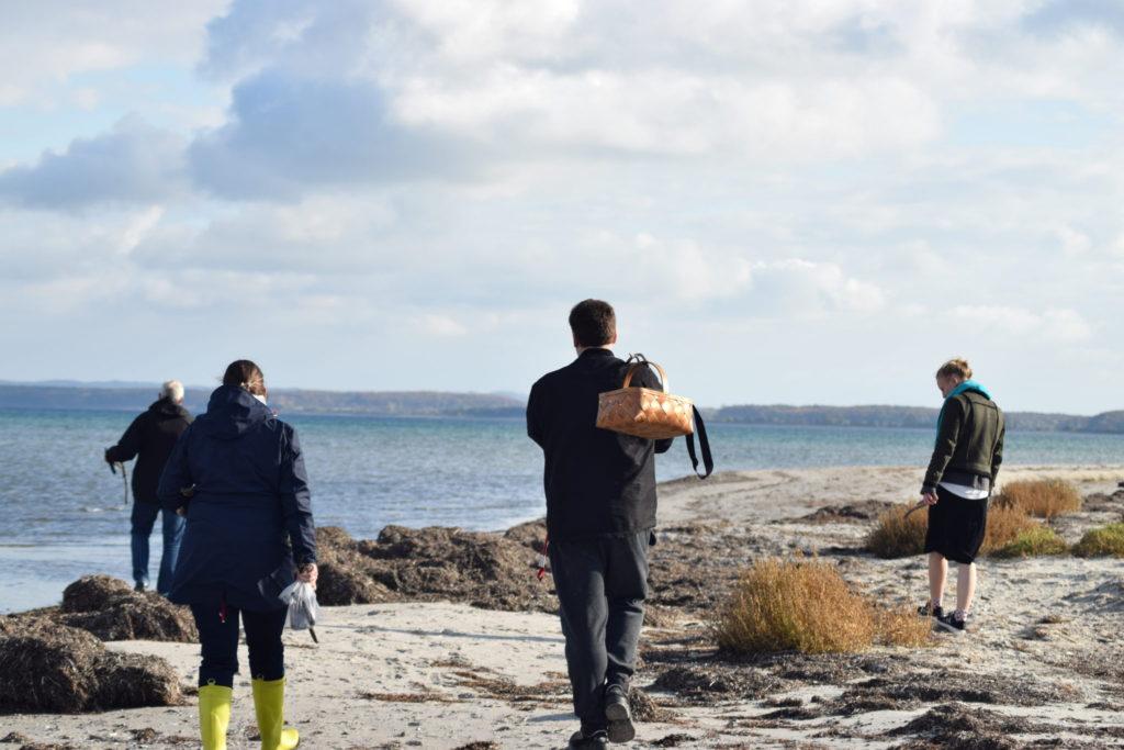 Nu er vi nået vejs ende, og går turen tilbage langs stranden. Ulvshale Nordstrand, Oplev spændende Møn.