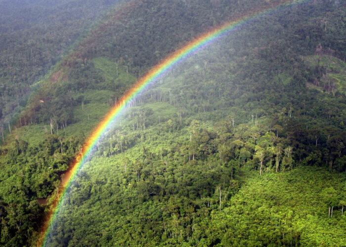 En regnbue over Ulu Baram regnskov i øst Malaysia Borneo. Regnskoven i Malaysia trues af Palmeolieindustrien, der hvert år brænder mere og mere regnskov for at etablere palmeplantager til Palmeolieindustrien. Fra Ildfugl.com, Blog, Hverdagsaktivisme, Spis Klima- Og Naturvenligt - Undgå Palmeolien I Dine Indkøbsvare