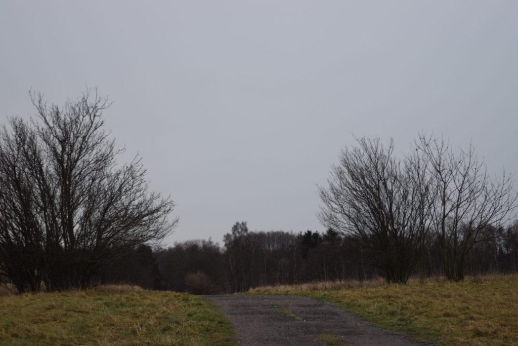 Udsigt over den sydøstlige del af Flyvestation Værløse en dag i januar 2018.
